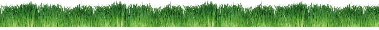 CountryMax.com Grass Banner